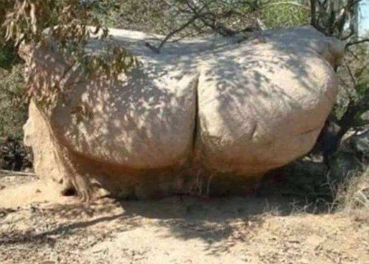 rock-bottom